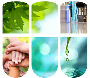Certified Green Housekeeping Professional Training Program