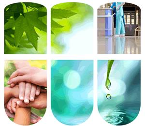 Certified Green Housekeeping Professional Training Program